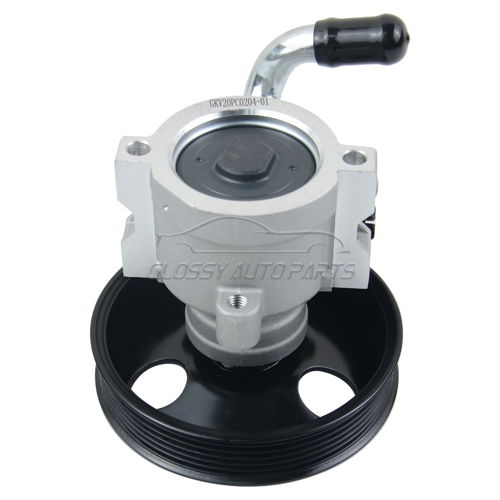 Power Steering Pump Chevrolet Captiva 2.4 4WD LPG C100 Vauxhall Antara 2.4 96626562 96626563 96626762 96626763
